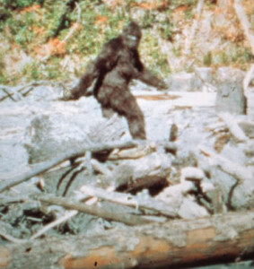 Bigfoot (Sasquatch) caught on tape!